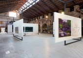 Passage to History: 20 Years of La Biennale di Venezia and Chinese Contemporary Art  - Biennale Arte